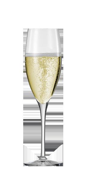 S Champagne Glasses Hire